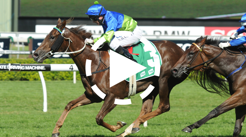 Royal Randwick Stakes  Replay 2013