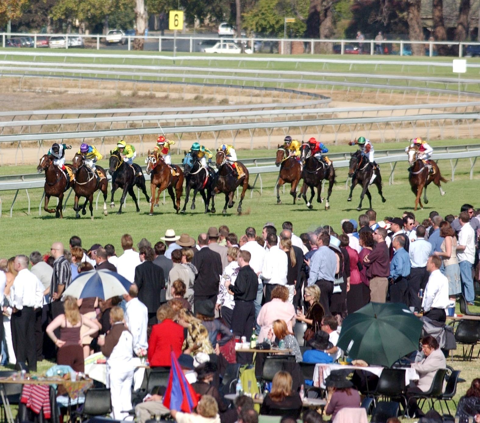 Wagga-Cup-Day-05-(in-straight).jpg