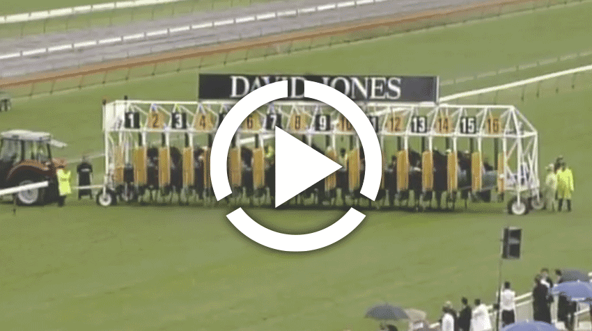 T J Smith Stakes Replay 2011