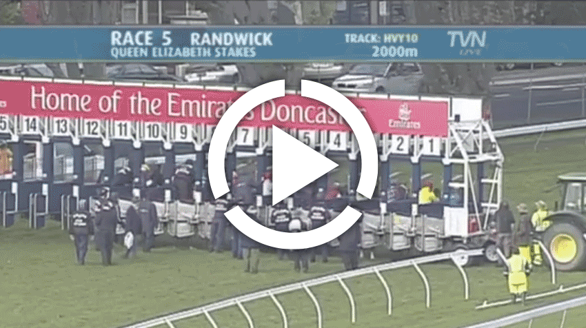 Queen Elizabeth Stakes Replay 2011