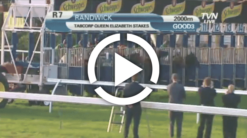 Queen Elizabeth Stakes Replay 2012