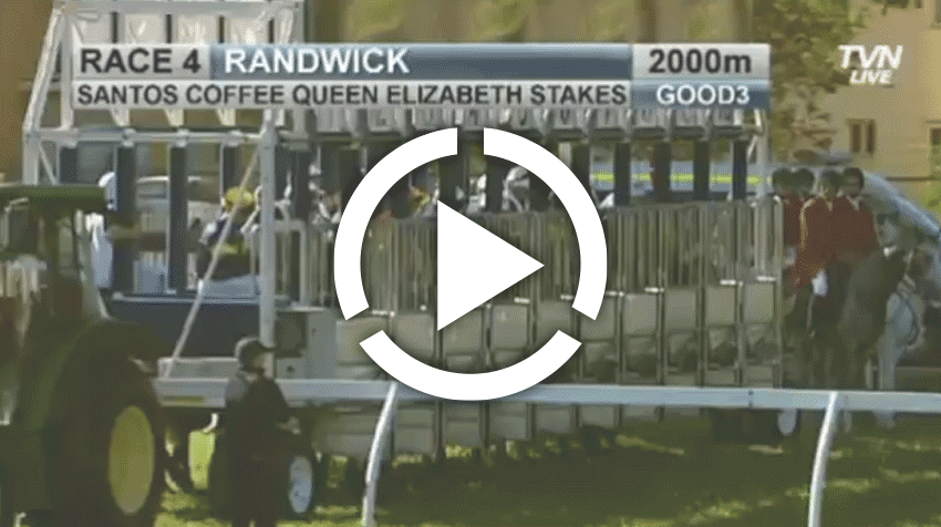 Queen Elizabeth Stakes Replay 2013