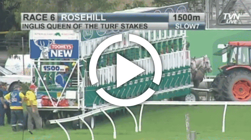 Queen of the Turf Stakes  Replay 2013