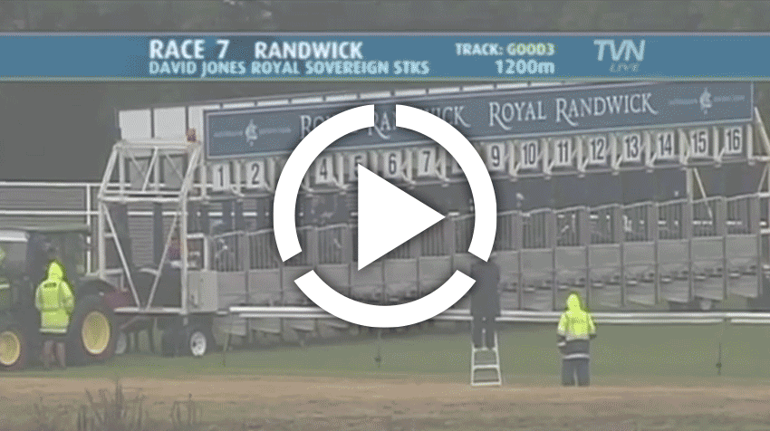 Royal Sovereign Stakes Replay 2011